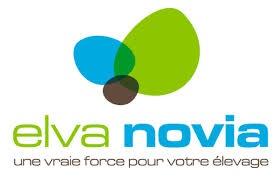 ElvaNovia - Copie